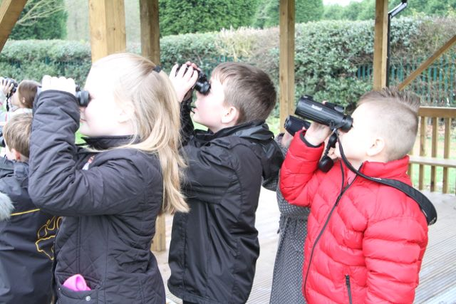 Big School Birdwatch - 43