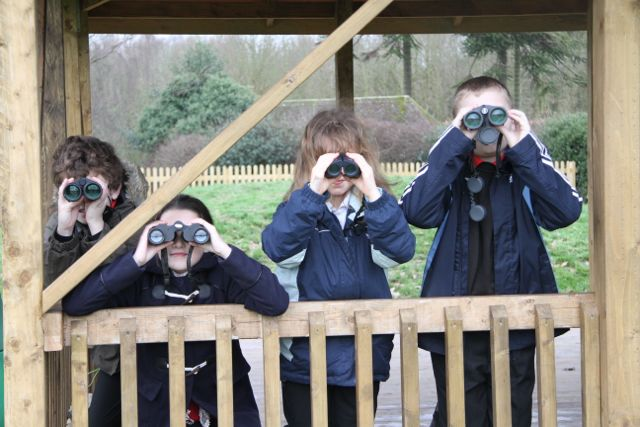 Big School Birdwatch - 71