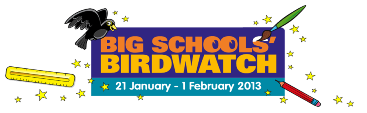 SchoolBirdWatch