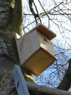Green Team Nest Boxes32
