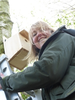 Green Team Nest Boxes36